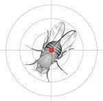 Fliege auf Zielscheibe (Logo)